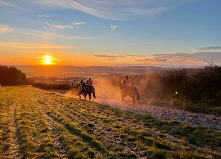 Kerry Lee's gallops at Brand Hill, near Shobdon, Herefordshire. Photo: Kerry Lee.