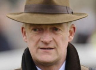 Willie Mullins trained Gaillard Du Mesnil fromthehorsesmouth.info tip.