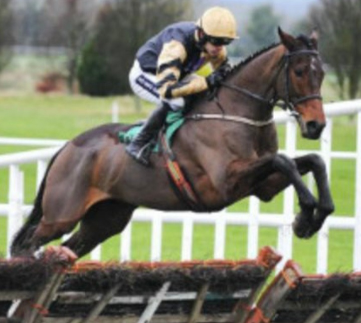 Bellshill: Fatal injury denied 2021 Aintree Grand National run.