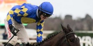 Danny Mullins rode Stormy Judge (8-1) tipped by fromthehorsesmouth.info Navan win. Photo: Twitter