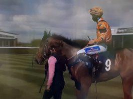 Tom Midgley and Rukwa lead into winner's enclosure.