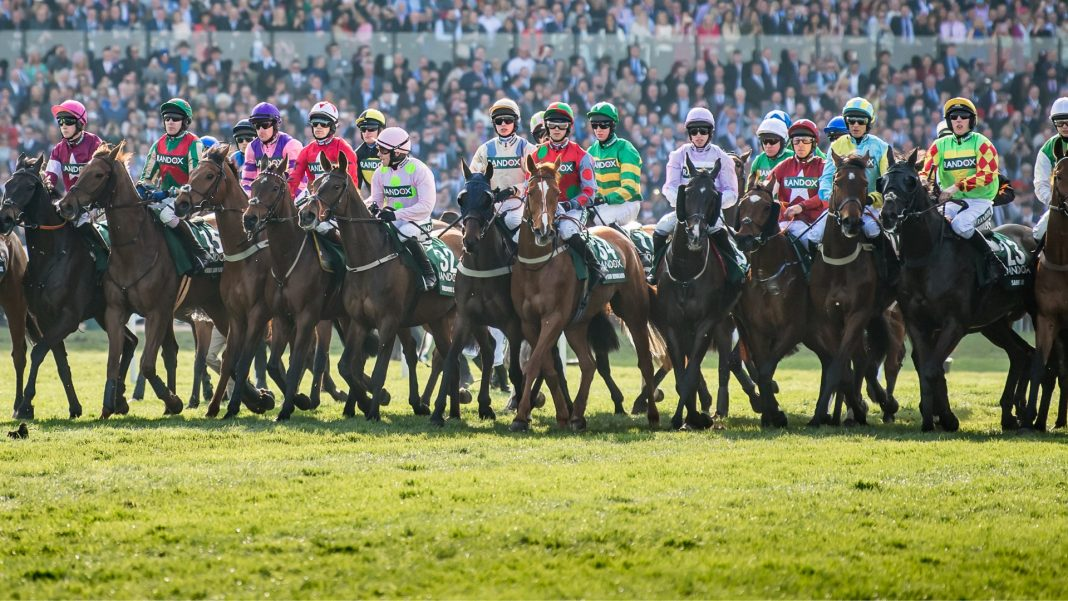 Lining up at the start of the Grand National