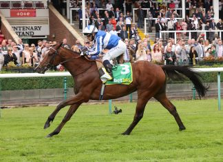Alounak wins Haydock's feature race of the day, The Bet 365 Old Newton Cup Handicap Stakes