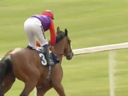 Sir Michael Stoute saddled fromthehorsesmouth.info tip Hasty Sailor (9-2) to win the Class 3 Collingwood Handicap over 1m 4f at Newcastle