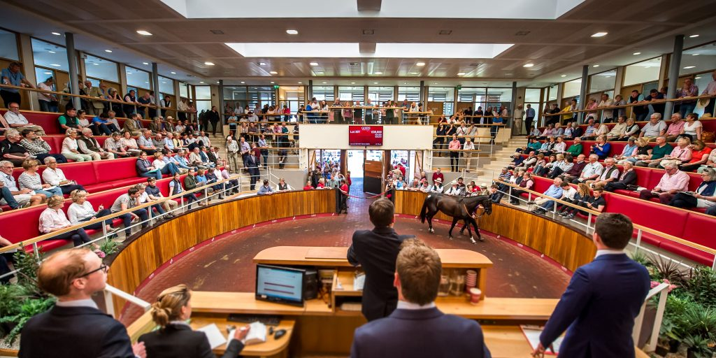 Michael O'Leary's Gigginstown House Stud sells 39 horses as Elliott returns