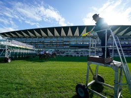 Glen Shiel (22-1) tipped each-way by fromthehorsesmouth.info second in Ascot Qipco British Champions Sprint Stakes